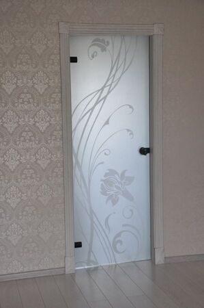 Стеклянные двери для душа, ванной и туалета5
